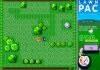 Play Lawn Pac